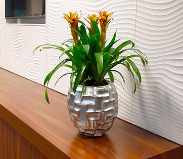 Heathland Plantcare Office Plants
